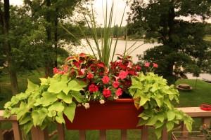 Miracle Grow Planting Mix